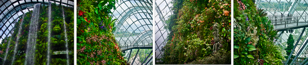Gardens by the Bay Cloudforest Singapore
